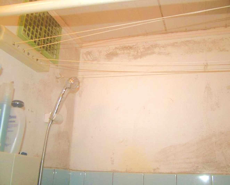 Вентиляция в ванной комнате и туалете: организация 55