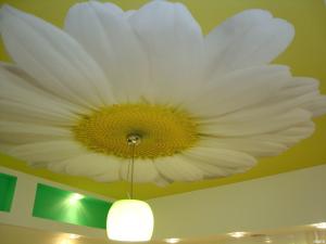 Использование натяжного потолка с рисунком и встроенными светильниками придает помещению нестандартный вид